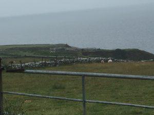 Dunbeg promontory fort